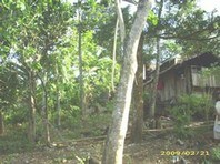 Sta Maria Pagadian City Foreclosed Vacant Lot Sale 0156882