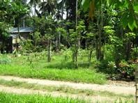 Foreclosed Vacant Lot for Sale in Teachers Ville Subdivision, Zamboanga City, Zamboanga Del Sur (AN-1261966)