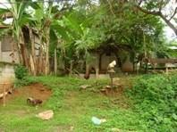 Villa Flora Executive Homes Cagayan Oro Vacant Lot Sale 2425565